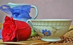 bimbó csendélet rózsa