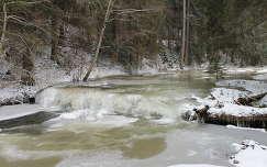 Szalárd-patak, Erdély, Görgényi-havasok