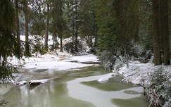 Szalárd-patak, Görgényi-havasok, Erdély