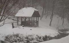 havazás erdő tél patak