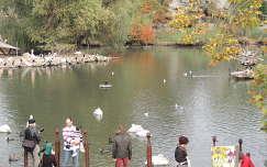 Budapest,Állatkerti tó ősszel