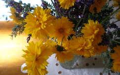 csicsóka virága virágcsokor és dekoráció
