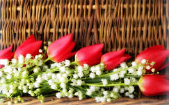 tavasz tavaszi virág gyöngyvirág tulipán virágcsokor és dekoráció