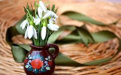 tavaszi virág hóvirág tavasz nőnap vadvirág virágcsokor és dekoráció