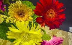 gerbera virágcsokor és dekoráció