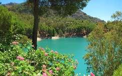 MÁLAGA-SPAIN