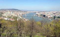 megérkezett a tavasz Budapestre