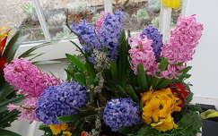 virágcsokor és dekoráció tavaszi virág jácint