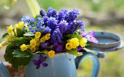 tavaszi virág fürtösgyöngyike virágcsokor és dekoráció tavasz