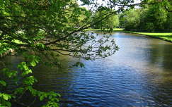 Haarlem-Holland, Park 17-05-2015