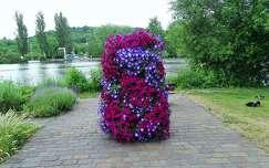 petúnia virágcsokor és dekoráció