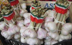 fokhagyma piac zöldség