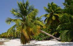 Dominika - Punta Cana