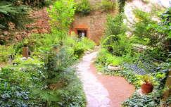 fűszernövénykert Kőszeg