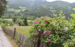 Ausztria,Flattal
