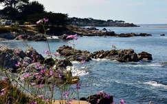 Monterey,California,USA