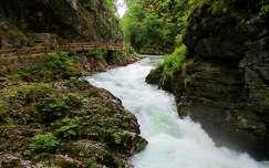 Szlovénia, Vintgar-szurdok