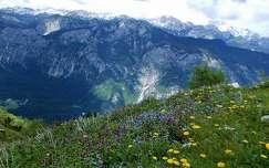 Szlovénia, Triglav Nemzeti Park, kilátás a Vogel hegyről