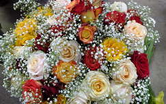 Rózsacsokor. Fotó: Csonki