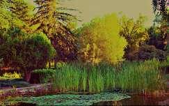 Siófok Jókai park