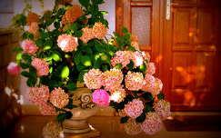 Rózsaszín hortenzia az apartman előtt