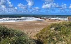 dánia tengerpart