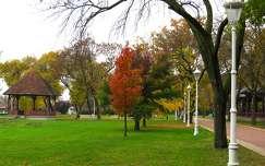 Palics, Zenepavilon, ősz