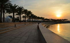 Doha, Katar, pálma