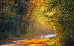 Az ősz fénye