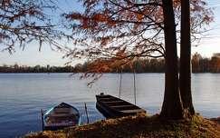Cseke-tó (Tata)