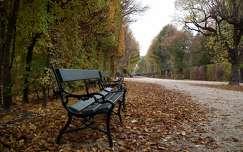 �sz a Sch�nnbrunn parkban, B�cs