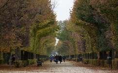 Ősz a Schönnbrunn parkban, Bécs