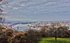 Látkép a Gellért-hegyről (ősz, fa, Duna, HDR, Budapest, város)