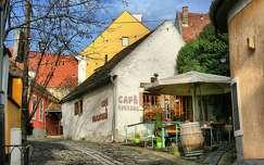 2015.12.22. Szentendre-Dorothea Bistro Café, Fotó: Szolnoki Tibor