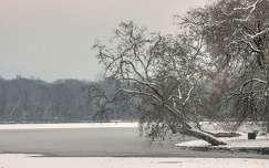 2016.01.02. Tata,Cseke-tó, Fotó: Szolnoki Tibor