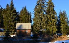 ház tél fenyő faház