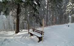 Bürgeralpe, Mariazell