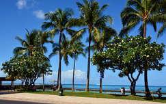 utcakép,Honolulu,Hawaii,USA