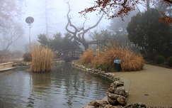 magyarország margit-sziget köd kertek és parkok budapest