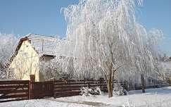 ház fa zúzmara kerítés tél