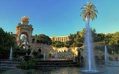 pálma barcelona spanyolország szökőkút