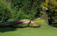 Páva virágokból. Palics, állatkert. Szerbia.