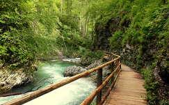 Szlovénia, Vintgár-szurdok