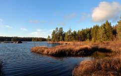 Garphyttan nemzeti park, svédország