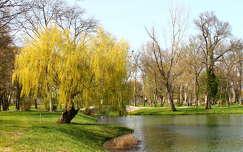Fehérvárcsurgó, Károlyi-kastély parkja