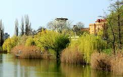 magyarország feneketlen-tó tó tavasz budapest