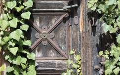 örökzöld kapu borostyán