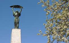 Szabadság szobor,Budapest