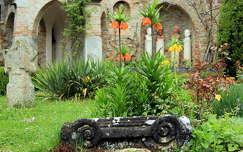 császárkorona kertek és parkok székesfehérvár bory vár tavaszi virág tavasz magyarország
