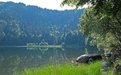 Fekete-erdő, Tengerszem